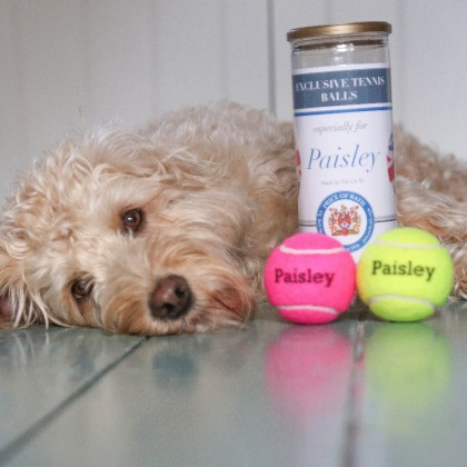 Personalised Coloured Dog Tennis Balls