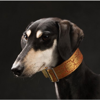 Sighthound Martingale Collar