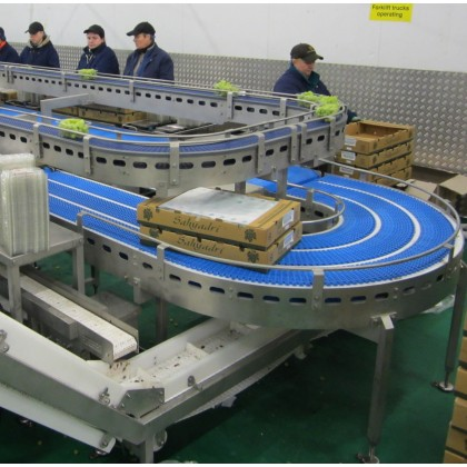 Stainless Steel Conveyor Systems